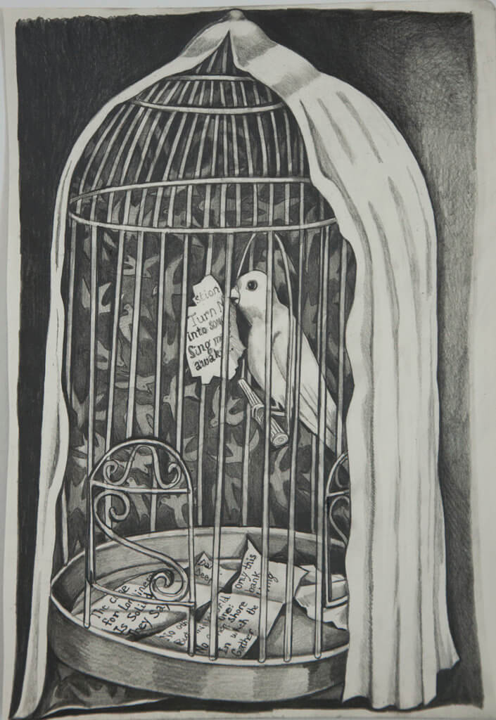 Nikki Maloof Bird Cage, 2020 graphite on paper 16 1/2 x 11 1/2 in. (41.9 x 29.2 cm.)