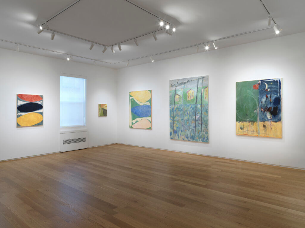 Ted Gahl Paintings Install Alexander Berggruen