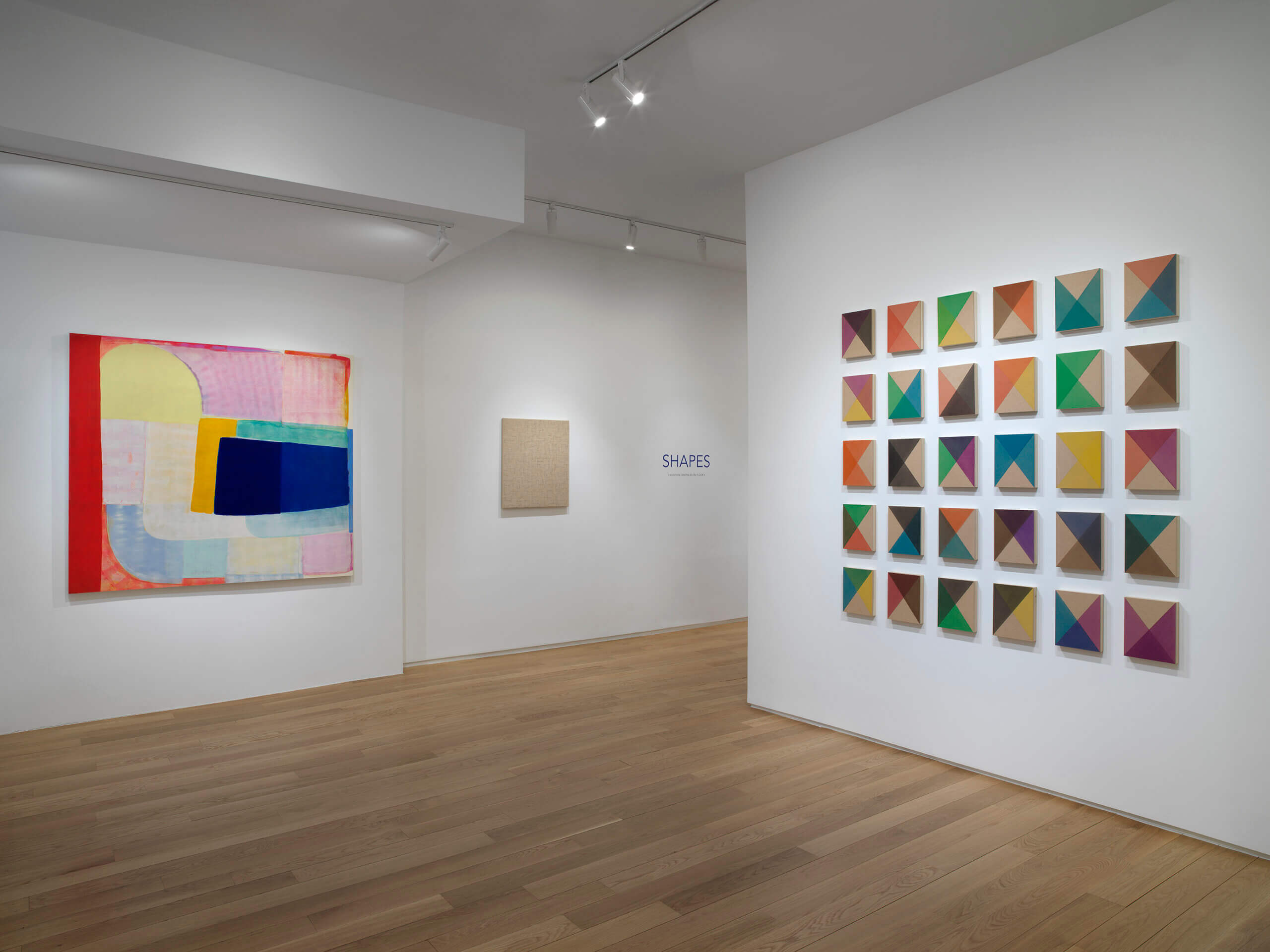 Shapes (April 21-May 27, 2021) at Alexander Berggruen, New York